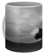 Lonely Olive Tree In A Green Field  And  Moving Clouds Coffee Mug