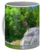 Lower Falls 0485 Coffee Mug