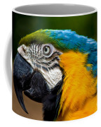 Macaw Coffee Mug