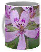 Magic Garden 18 Coffee Mug