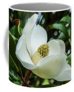 Magnolia Bloom IIi Coffee Mug