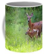 Maine White Tailed Deer Coffee Mug