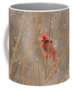 Male Northern Cardinal In Winter Coffee Mug
