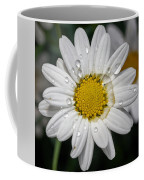 Marguerite Daisy Coffee Mug