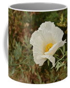 Matilija Poppy I Coffee Mug