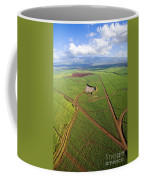 Maui Sugar Cane Coffee Mug