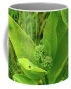 Milkweed Flower Buds  Coffee Mug
