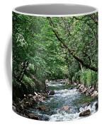 Minnehaha Creek Coffee Mug