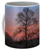 Misty Dawn Coffee Mug