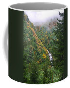 Misty Forest Turkey  Coffee Mug