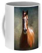 Misty In The Moonlight P D P Coffee Mug