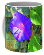 Morning Glory Coffee Mug