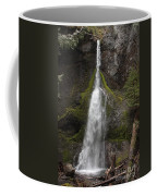 Mossy Waterfall Coffee Mug