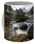 Mount Assiniboine Canada 17 Coffee Mug
