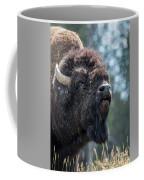 Mr. Funny Face Coffee Mug