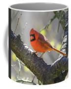Mr Northern Cardinal Coffee Mug
