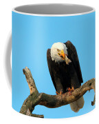My Dinner Coffee Mug
