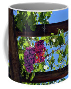 Napa Valley Inglenook Vineyard -2 Coffee Mug