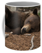 Naptime Coffee Mug