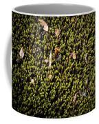 Nature Detail Coffee Mug