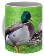 New Zealand - Mallard Ducks Coffee Mug
