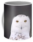 Snowy Owl 3256 A.k.a. Smiling Owl Coffee Mug