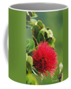 Ohia Lehua Coffee Mug