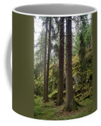 Old Forest In Kauppi Tampere Coffee Mug