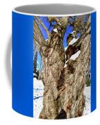 Old Willow Tree Coffee Mug