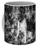 On The Leaves Coffee Mug