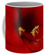 Orange Amaryllis Bloom Coffee Mug