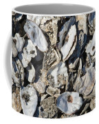 Oyster Shells Coffee Mug
