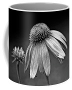 Passages Bw Coffee Mug by Steve Harrington