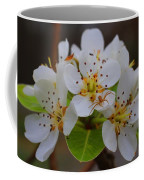 Pear Blossoms Coffee Mug