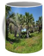 Pelican Island In Florida Coffee Mug
