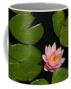 Pink Lotus Waterlily Coffee Mug