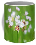 Pink Love 4 Coffee Mug