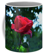 Pink Rose With Dew Drops Coffee Mug