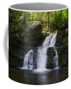 Pocono Mountains - Flowing Cascades Coffee Mug