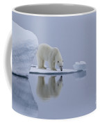 Polar Bear In Svalbard Coffee Mug