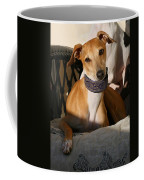 Portrait Of An Italian Greyhound Coffee Mug