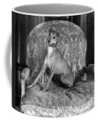 Portrait Of An Italian Greyhound In Black And White Coffee Mug