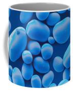 Potato Starch Granules Sem Coffee Mug