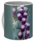 Prickly Pear Fruit  Coffee Mug