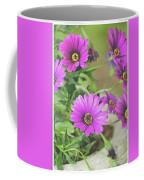 Purple Aster Flowers Coffee Mug