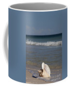 Queen Conch On The Beach Coffee Mug