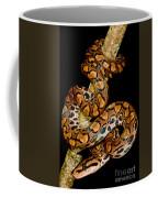 Rainbow Boa Coffee Mug