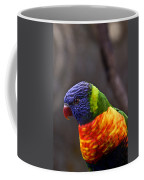 Rainbow Lorikeet Coffee Mug