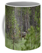Rare And Wild. Finnish Forest Reindeer Coffee Mug