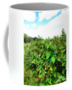 Raspberry Fields 2  Coffee Mug
